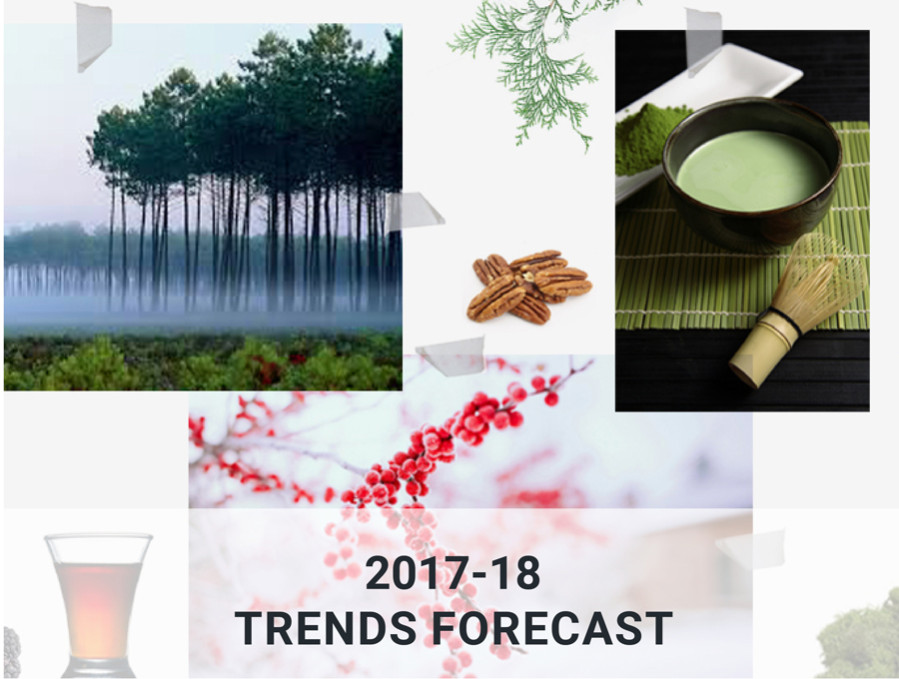2017-18 trends forecast
